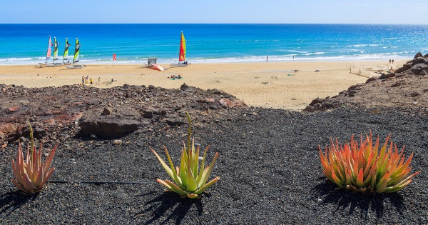 Fuerteventura - The Sahara extended