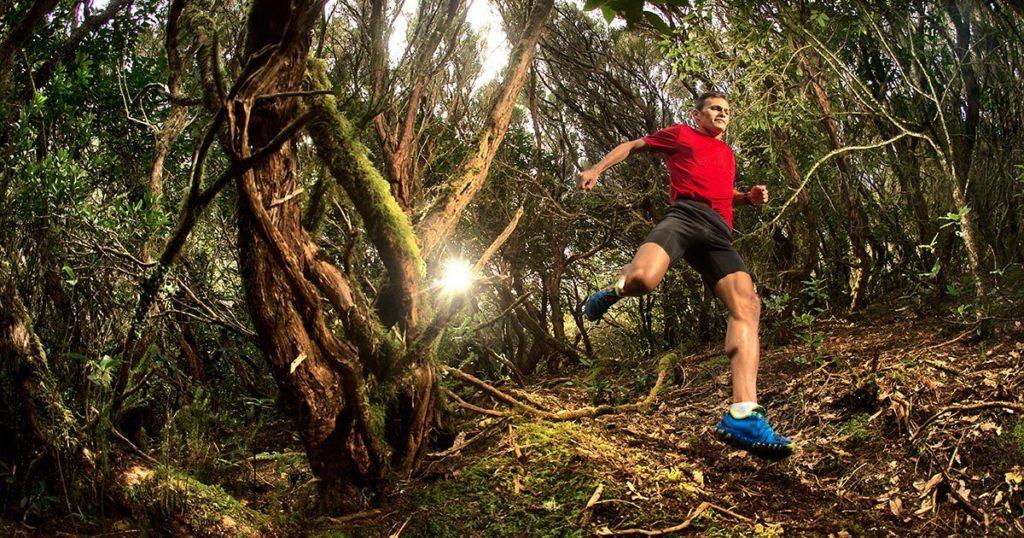 La práctica del trail en el Parque Nacional de Garajonay: guía de buen uso